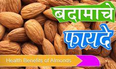 बदामाचे फायदे   Benefits of Almonds in Marathi