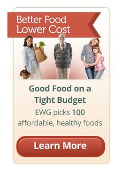 In an era of rising food prices and economic strains that have put one in four people on federal nutrition assistance, nearly all Americans must search for foods that are nutritious and affordable. To ease the pressure, Environmental Working Group's researchers have created Good Food on a Tight Budget, a science-based shopping guide of the top 100 foods that are healthy, cheap, clean and green.