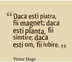 Fii Iubire.......! The Way I Feel, Just The Way, Victor Hugo, Sad, Motivation, Feelings, Sayings, Live, Quotes
