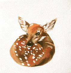 Fawn, acrylic painting by Elizabeth Becker