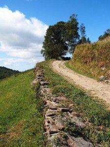 Swissflex | article on hiking in Lucerne | schlafKultur magazine spring 2012 | © Jule_Berlin