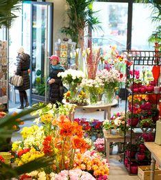 Blumen Pridt - Home