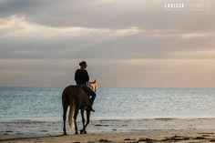 Arabian horse Djunnah S. (Balasjow x Alexander) at the beach