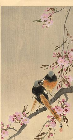 Redstart on Cherry Branch by Ohara Koson 小原古邨 - Ohara Koson, Art And Illustration, Japanese Bird, Asian Artwork, Art Chinois, Japan Painting, Art Japonais, Japan Art, Japanese Artists