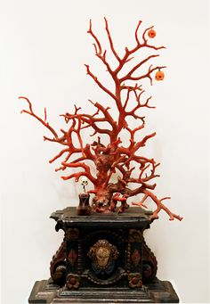 Coral tree as a Naturalia item of the Obricht Wunderkammer, Berlin.