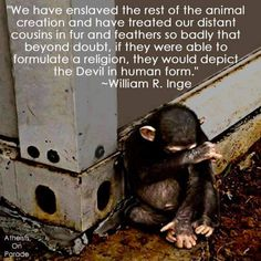 Animal rights. We need to challenge how we've been taught to treat animals. They are our cousins and friends.