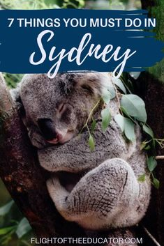 Sydney is great for solo, friends or couples! There are lots of couple activities and romantic things to do in Sydney that would be just as fun alone! Perth, Brisbane, Melbourne, Australia Country, Sydney Australia, Australia Trip, Great Barrier Reef, South Wales, Travel Box