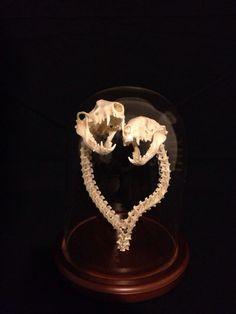 Articulated Bone Sculpture Oppossum Skulls & Snake by RitualAbuse, $250.00