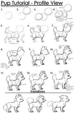 Pup tutorial by TheShadowedGrim on DeviantArt: