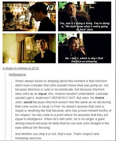 I DONT ship Johnlock, but I do think that their friendship is a wonderful thing