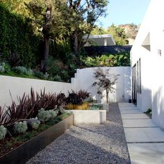 Modern Home Herb Garden Design Ideas, Pictures, Remodel, and Decor - page 4
