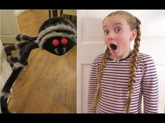 Girl Loves Giant Spider - Giant Spider Attacks Pet - SAD REAL LIFE STORY Spider Light, Giant Spider, Diy Gifts, Real Life, Sad, Eyes, Youtube, Giant Huntsman Spider, Hand Made Gifts