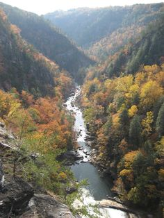 One of the most spectacular canyons in the eastern U.S., Tallulah Gorge is two miles long and nearly 1,000 feet deep. Visitors can hike rim trails to several overlooks, or they can obtain a permit to hike to the gorge floor. A suspension bridge sways 80 feet above the rocky bottom, providing spectacular views of the river and waterfalls. Georgia