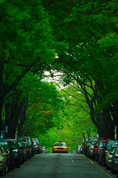 West Street Uws New York City #newyork, #NYC, #pinsland, https://apps.facebook.com/yangutu