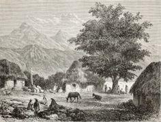 Die Peruanischen Anden – Lebensraum des Chinarindenbaums. – »Schließlich erreichte [Henry Whittaker] die Gegend von Loxa. Er fand und bestach die cascarilleros, die Rindenschneider, einheimische Indianer, die wussten, wo die guten Bäume standen. Er suchte weiter und fand Chinarindenbäume, die sogar noch versteckter lagen.« S. 47