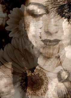 by Alaya Gadeh Double Exposition, Creative Photography, Art Photography, Illusion Photography, Collages, Double Exposure Photography, Multiple Exposure, Brown Eyed Girls, Thing 1