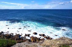 beach, Manly, Sydney, Australia, Euriental