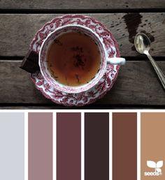Déclinaison de couleurs café
