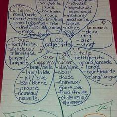 French anchor chart. Adjectifs = bleus et noms = oranges. Merci, Brooke!