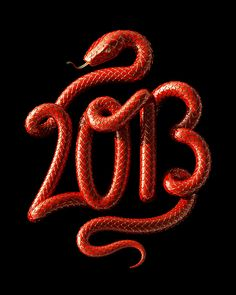 2013: Year of the Snake on Behance