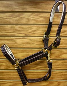 Many thanks to Walsh for this cob size padded halter from their Signature Series!