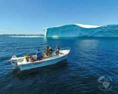 Twillingate is a town located off the northeastern shore of Newfoundland. Here are our favourite 5 things to do in Twillingate. Although it is a small Ski Banff, Stuff To Do, Things To Do, Discover Canada, Canada Destinations, Visit Canada, The Great White, Newfoundland And Labrador, Boat Tours