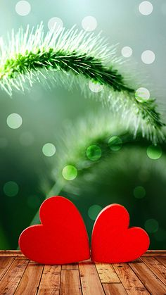 Cool Iphone 6 Home Screen Iphone 6 Christmas Wallpaper Hd images Wallpaper Iphone 6s Plus, Heart Iphone Wallpaper, Flower Phone Wallpaper, Iphone Wallpapers, Hd Wallpaper, Home Screen Wallpaper Hd, Christmas Wallpaper Hd, Locked Wallpaper, Beautiful Wallpaper For Phone