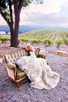 Beautiful wedding gown at vineyard photo shoot... ok that is just too awesome! I so would have done this if I had thought of it, but I would have on cowboy boots, Scott comes in on a ivory-white horse!!!!