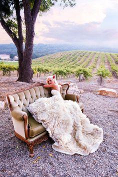 Beautiful wedding gown at vineyard photo shoot