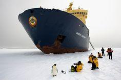 Arctic travel.