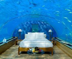 Sleep with the fishes in an entirely new manner with this stunning underwater hotel! Immersed deep in the crystalline waters of the Indian Ocean, the Conrad hotel provides guests with unparalleled views of the underwater ecosystem.