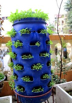 Stylish Plastic Garden Planters Outdoor Décor Ideas 47 Container Gardening and Garden planters are a warm and inviting way to add interest to your outdoor decorating spaces. Plastic Barrel Ideas, Plastic Barrel Planter, Hydroponic Gardening, Container Gardening, Aquaponics Greenhouse, Aquaponics System, Barrel Garden Ideas, Plastic Drums, Water Barrel