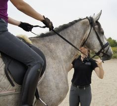 Improving Your Riding Off Horse - few things that are good taken care of on the ground...