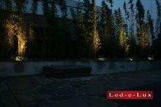 Mooie bamboe planten die in het donker aangelicht worden door de led spots van Led-e-Lux Lush