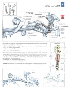 Leg Curls on a Prone Leg Curl machine. Do a set with heavy weight using both legs. Then immediately do a set with one leg (let the other leg hang) using a lighter weight. Switch legs. Work to fatigue.