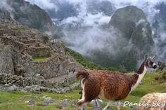 Cusco. Perú.