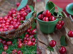 Collecting Cherries. | The photo on the left was taken today… | Flickr