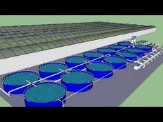 ▶ 1 Acre Aquaculture