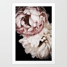 Art Print featuring Sweet Dreams Peonies 2 by Regina Mountjoy