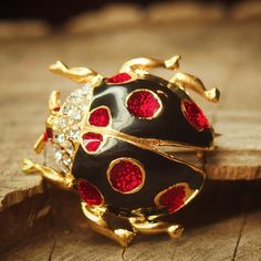 Bring the garden with you with this Black Ladybug Brooch  #craft365.com