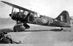 Navy Aircraft, Ww2 Aircraft, Fighter Aircraft, Fighter Jets, Westland Helicopters, Westland Lysander, Aircraft Images, Ww2 Pictures, Air Space