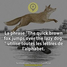 Did you know that? Wtf Funny, Funny Facts, Funny Quotes, Things To Know, Did You Know, Resume Design, Cv Design, French Quotes, Change Quotes