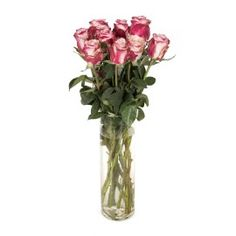 Two Tone Speciality Roses Glass Vase, Roses, Day, Home Decor, Decoration Home, Pink, Room Decor, Rose, Home Interior Design