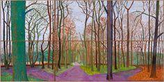 Woldgate Woods, 30 March-21 April, 2006