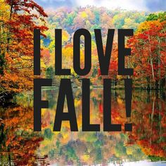 Happy 1st Day of Fall   What's your FAVORITE thing about the Fall Season?  Share below!  #Fall #Autumn #Season #FallSeason #Clothes #FAshion #Style #Coffee #Tea #ColorChange #FallingLeaves #Leaves #Colorful #Beautiful #LoveFall #Pumpkins #Football #Weather #Pretty