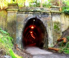 Cycling or Walking via Fernleigh track tunnel