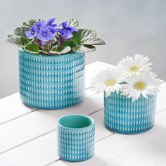 Are you interested in our  three Blue Ceramic Planters? With our macrame hanger trend for easter you need look no further.