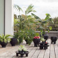 ames - Barro Topf #urbanjungle #rooftopplants