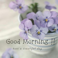 Everyone likes good morning images. If you too are searching for good morning images with flowers, then you have come to the right place. Welcome to our website. We provide good morning images on our website. Good Morning Friends Quotes, Good Morning Happy Sunday, Good Morning Picture, Good Morning Messages, Good Morning Greetings, Good Morning Wishes, Good Day Images, Beautiful Morning Pictures, Good Morning Images Flowers