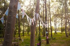 wedding, trees, bunting, decorate